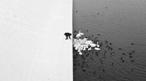 winter-contrast-in-krakow-poland-black-and-white